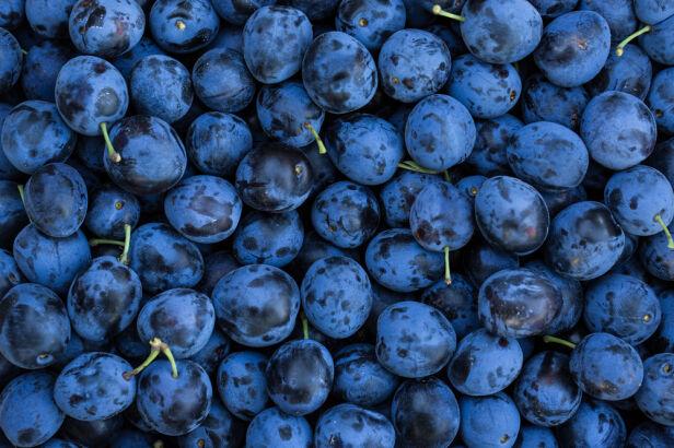 Ukradli z sadu ponad tonę śliwek Shutterstock