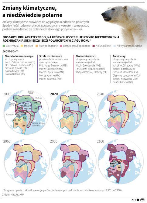 Jak zmiany klimatu wpływają na niedźwiedzie Polarne (Maria Samczuk/PAP)