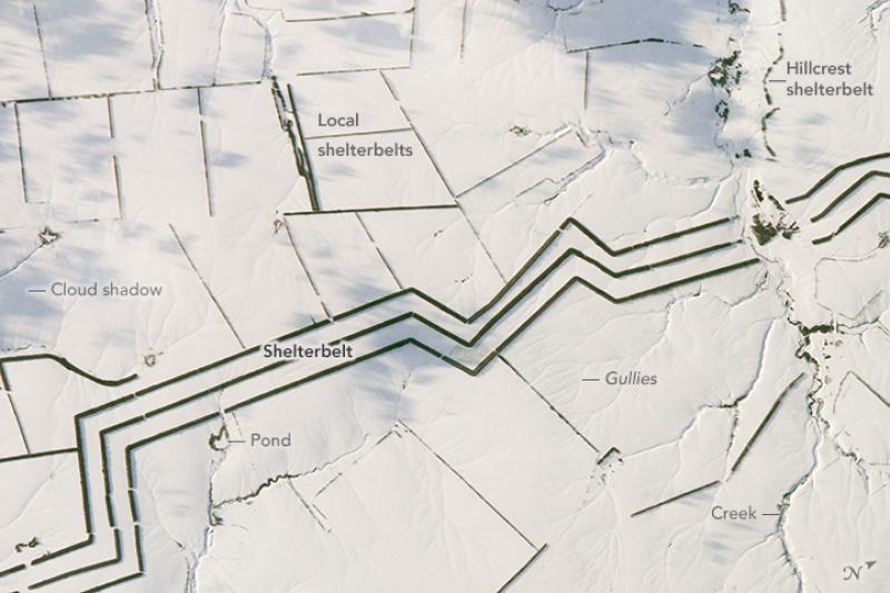 Zdjęcie satelitarne stepów w Rosji w Obwodzie wołgogradzkim