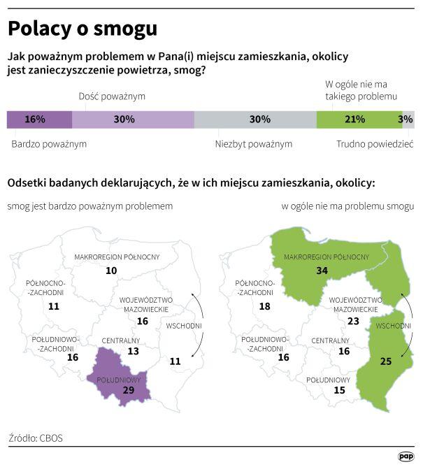 Polacy o smogu (Adam Ziemienowicz/PAP)